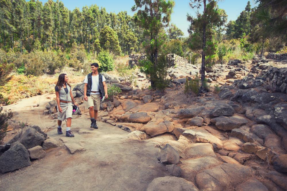 excursiones-tenerife-baobab-suites